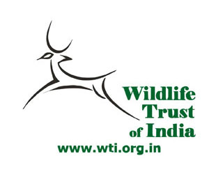 Wildlife Trust of India (WTI)
